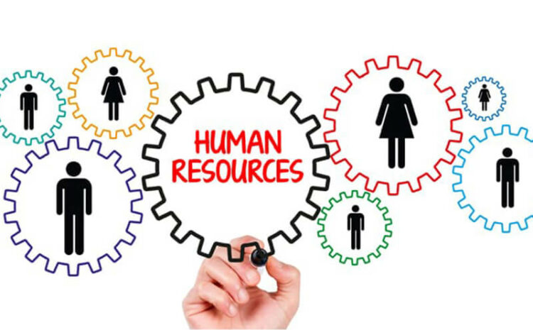 Careers in Diploma in Human Resource Management