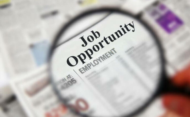 Job opportunities after having a degree in Certificate III in Business Administration